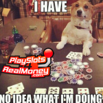 Online Gambling Memes
