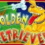 Play real money Golden Retriever Slots Mobile Phone